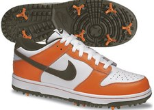 Nike Golf Dunk Shoes