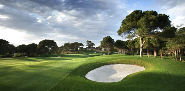 Montgomerie Max Royal