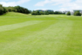 Aintree Golf Course
